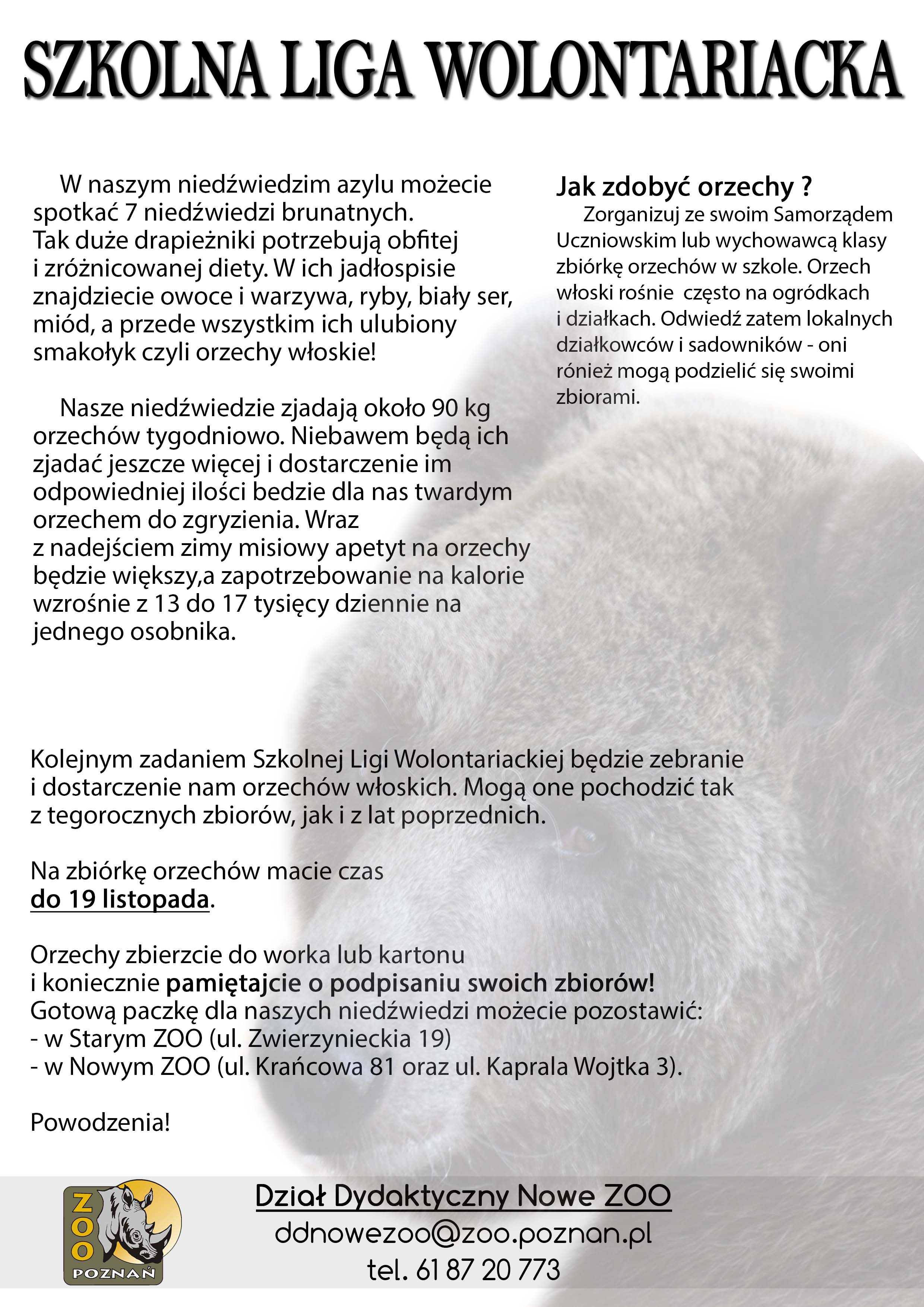 2.-ZADANIE-LISTOPAD-ORZECHY15576