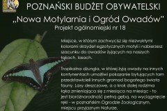 PBO_Nowa-motylarnia15579